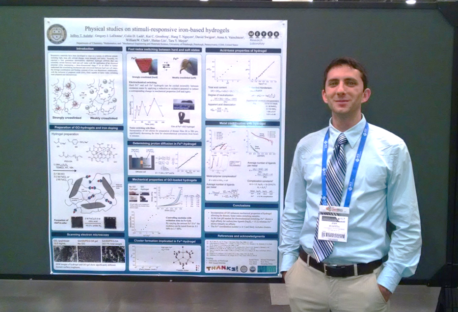 Jeff Auletta Poster Fall ACS 2014