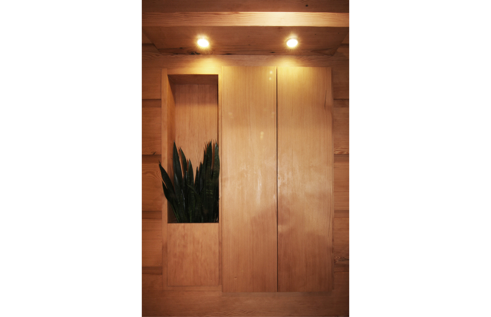 Flat doors, plantings and lighting collaborate to keep the new bathroom discrete.