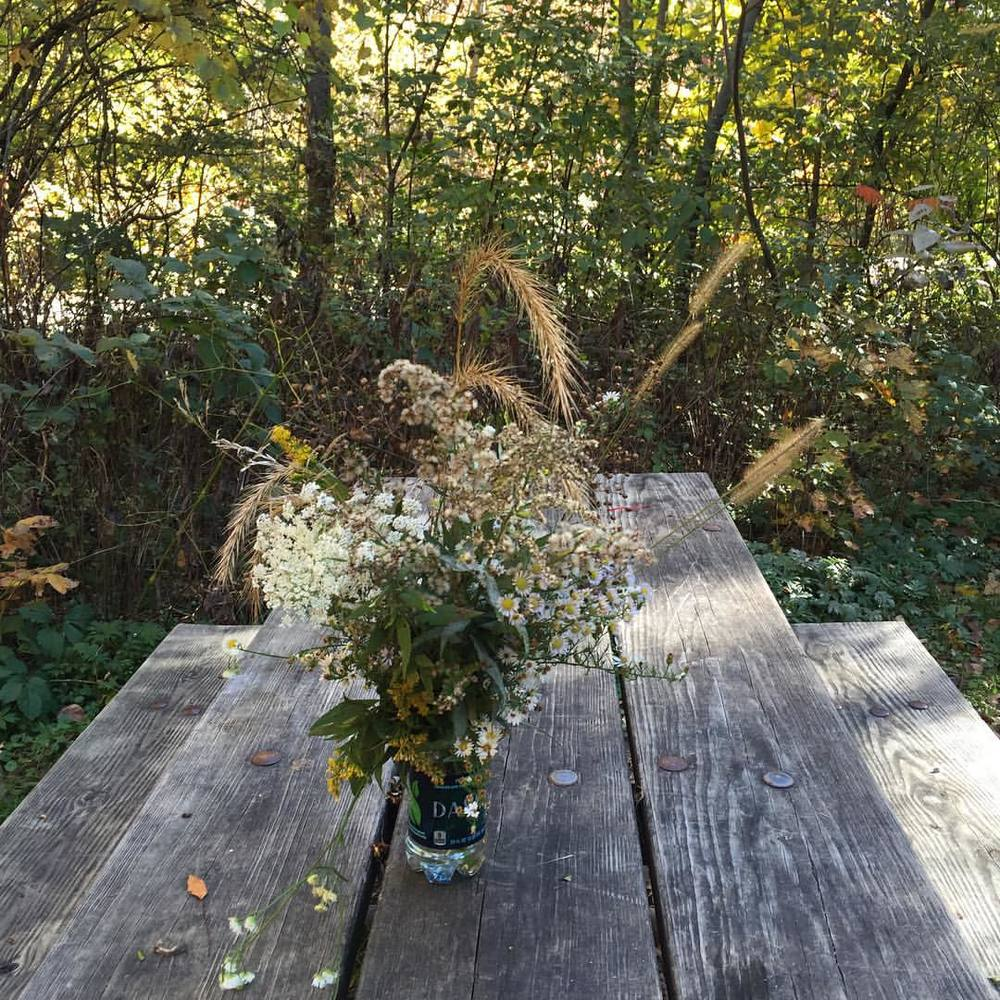 Autumn camping bouquet #fallflowers #mncamping #forrestville #iloveyou