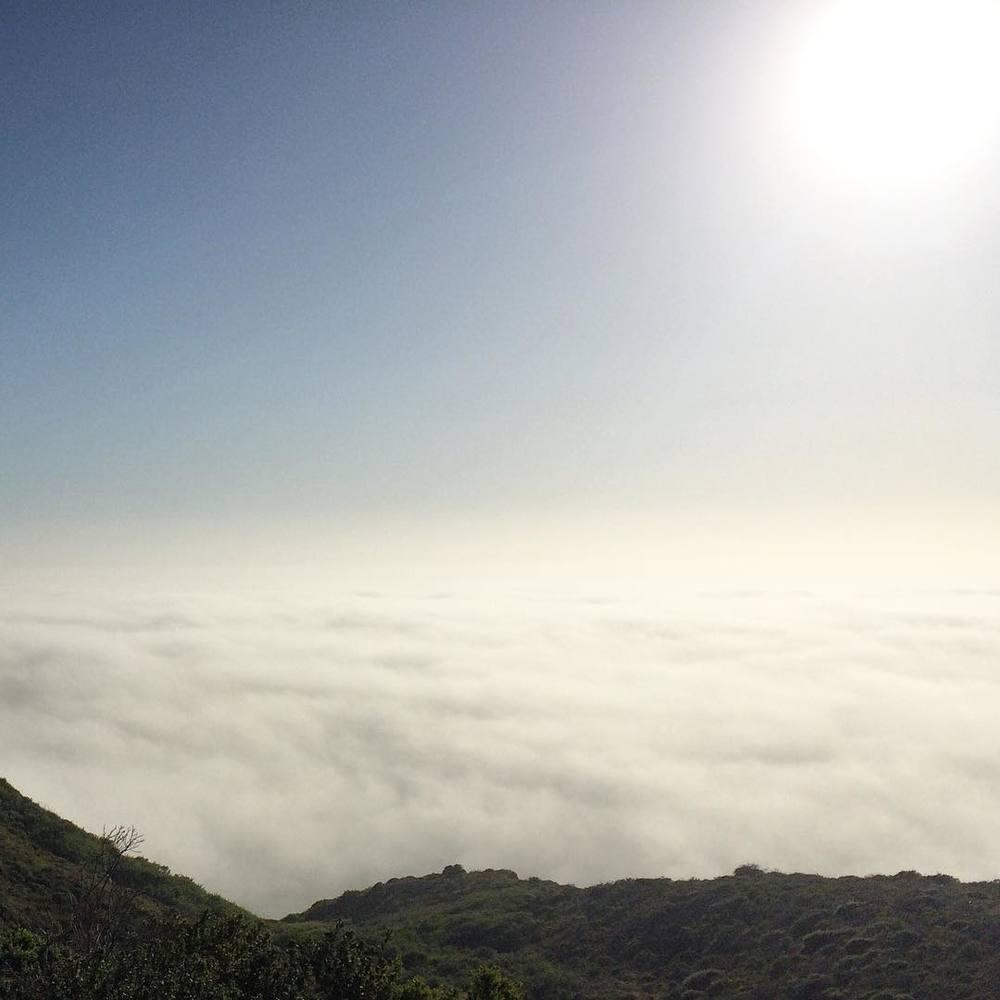 we are in the sky #California #bigsur #routeone #fog
