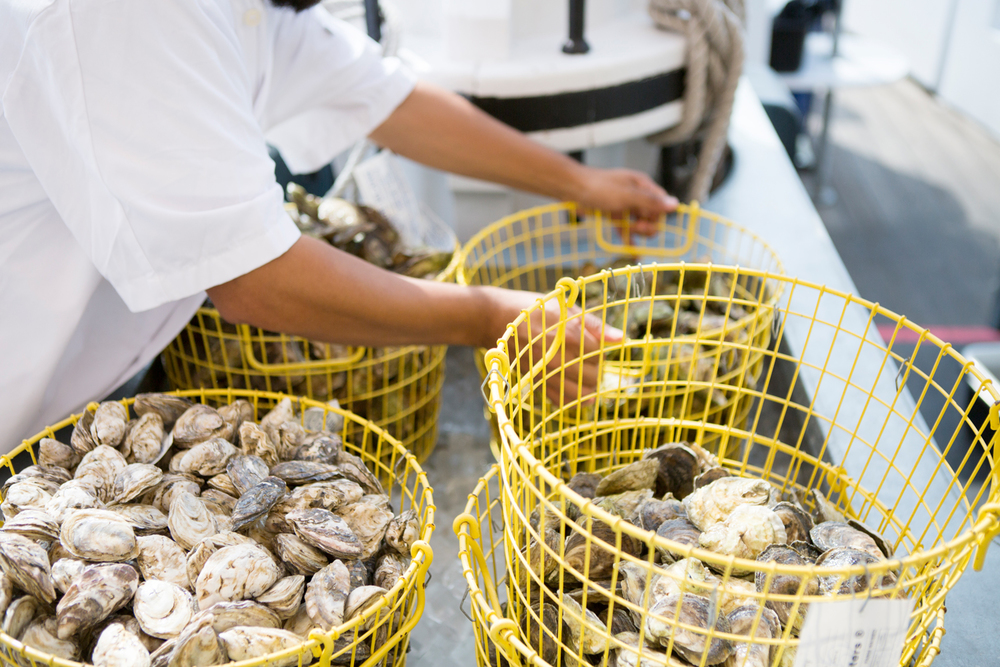 Grand_Banks_Media_Kit_2015_Oyster_Baskets_CREDIT-Doug-Lyle-Thompson.jpg