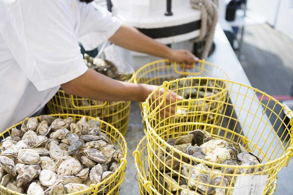 Grand_Banks_Media_Kit_2016_Oyster_Baskets_CREDIT-Doug-Lyle-Thompson.jpg