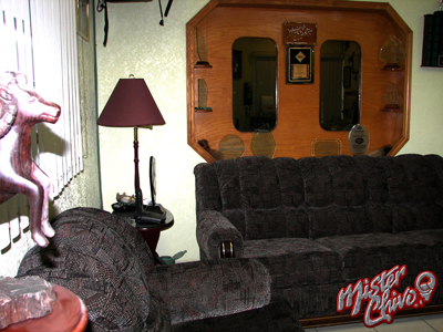 Recepción (vista complementaria), donde nuestros visitantes , hacen cómoda antesala.