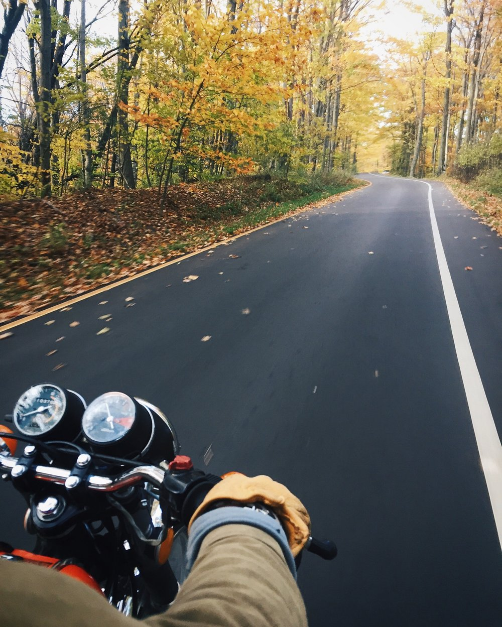 motorcycle, fall, autumn