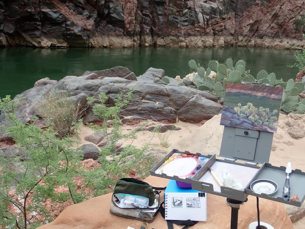 Strada Micro easel set up, WIP on a cactus painting. Lower Granite Camp, mile 115