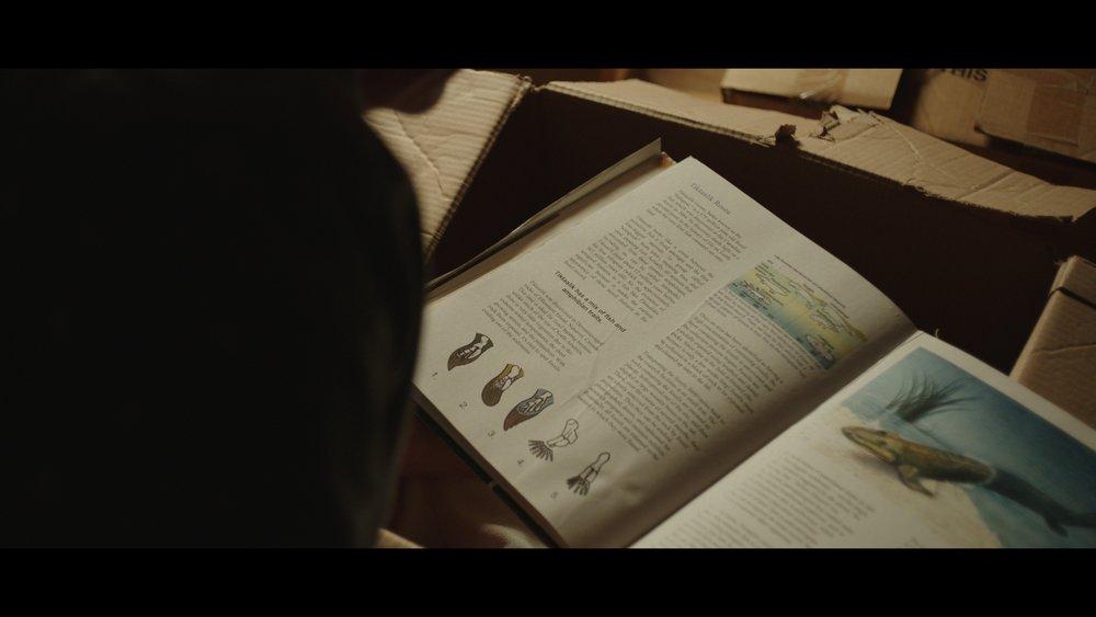 Tiktaalik Book_1.97.1.jpg