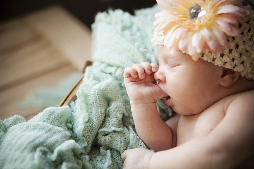 North Carolina newborn Photography