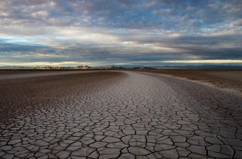 At the end of the Colorado River is a 75 mile swath of dry delta, once lush riparian area at the sea. In March of 2014 many lovers of Red have seen Her kiss Her Mother,the Sea of Cortez,once again, . Photo courtesy of Peter McBride.