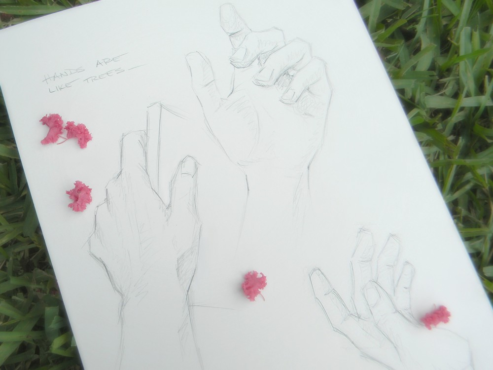gigi reinette - hands are like trees - hand sketches