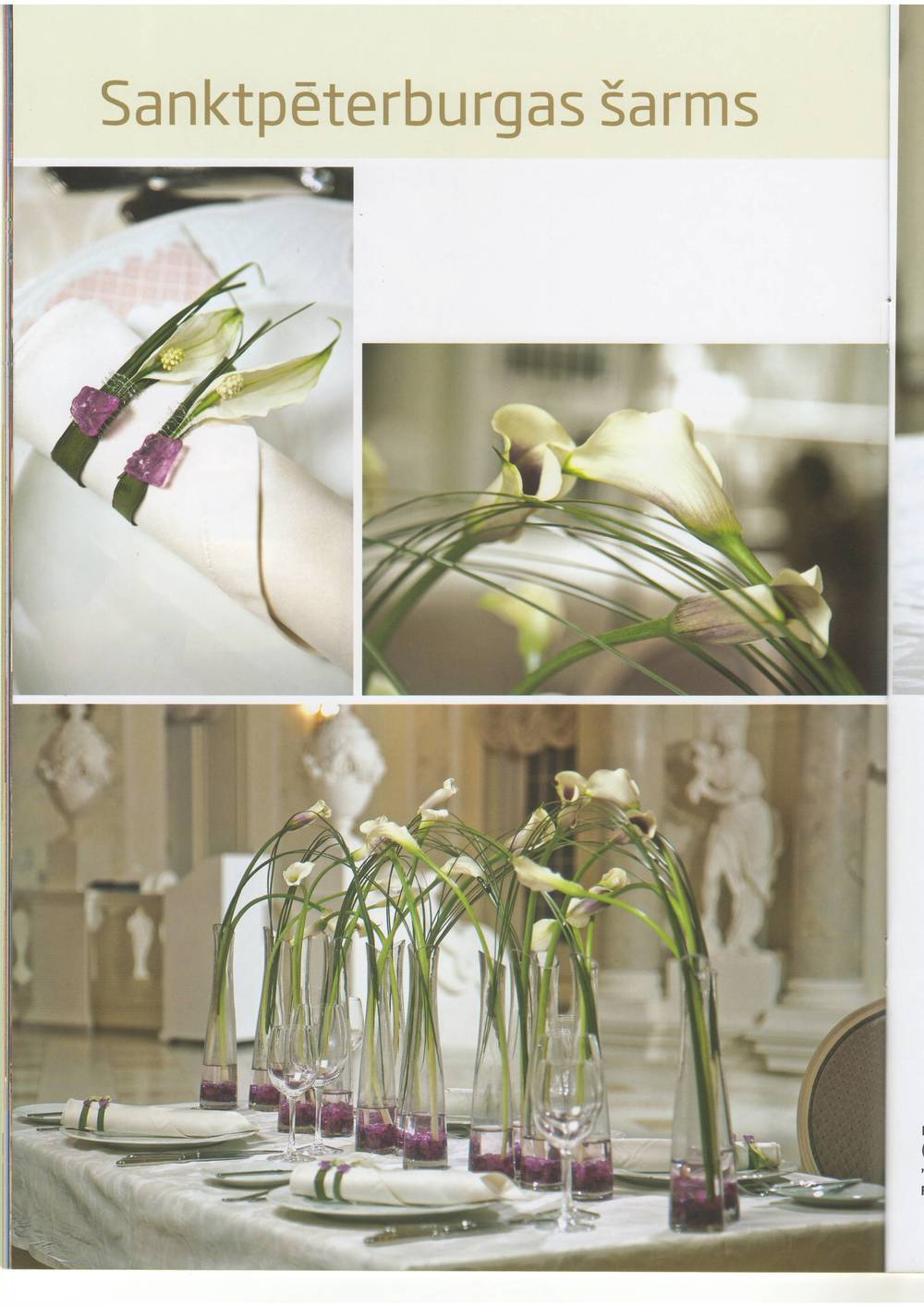floristika spring 2011-01.JPG