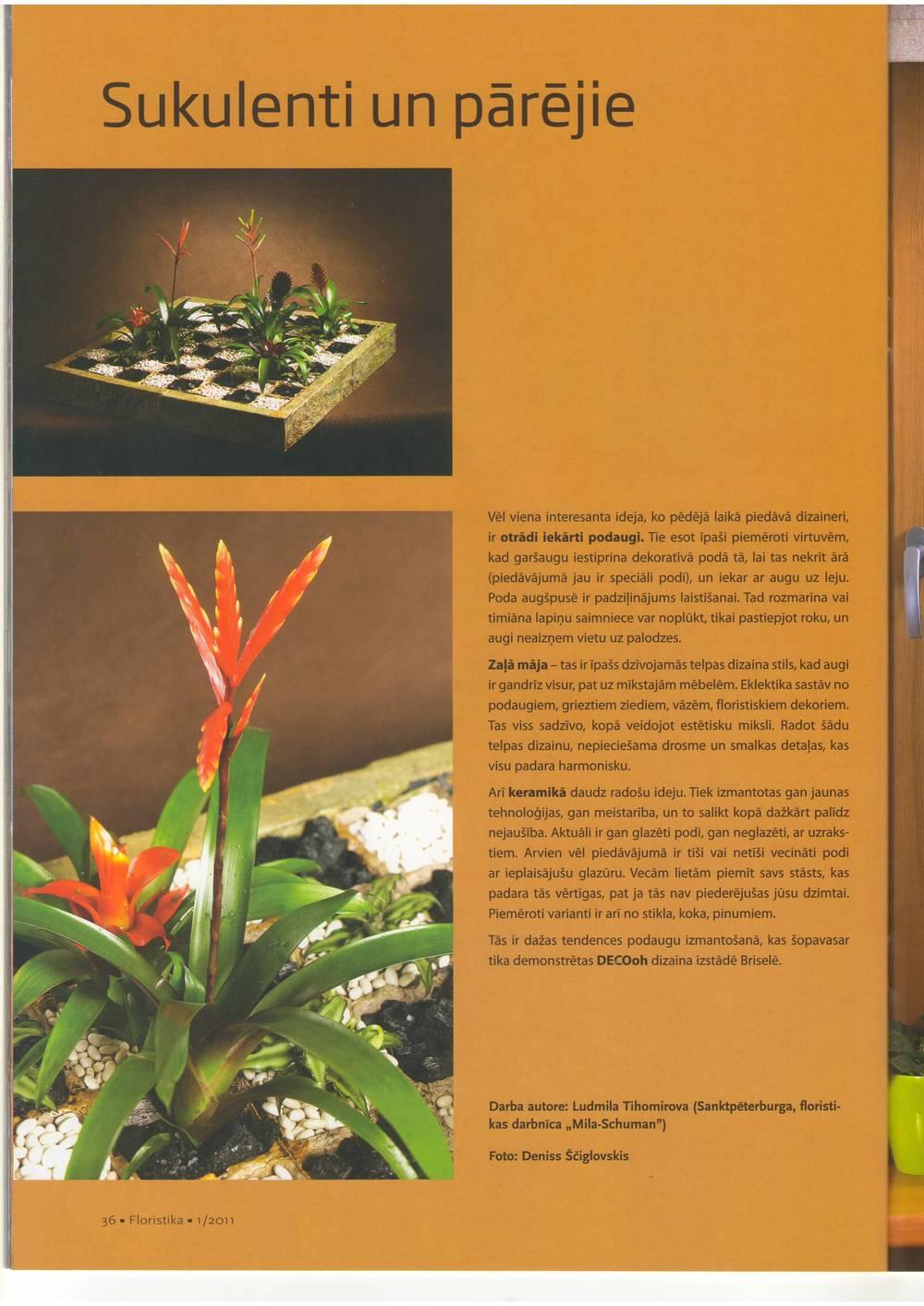 floristika spring 2011-05.JPG