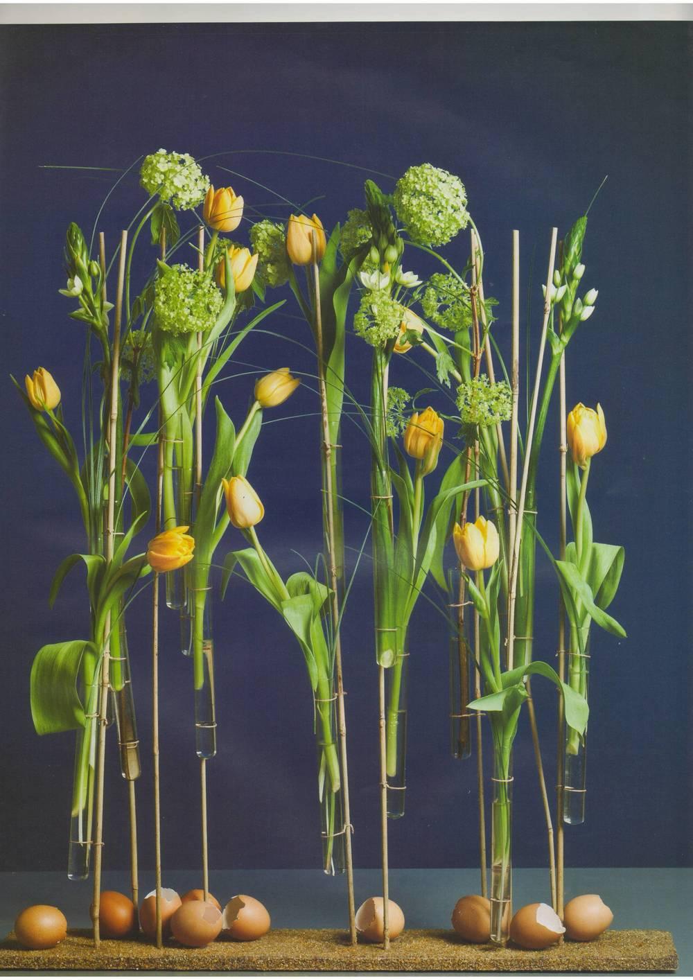 Цветы 04 2011-04.JPG