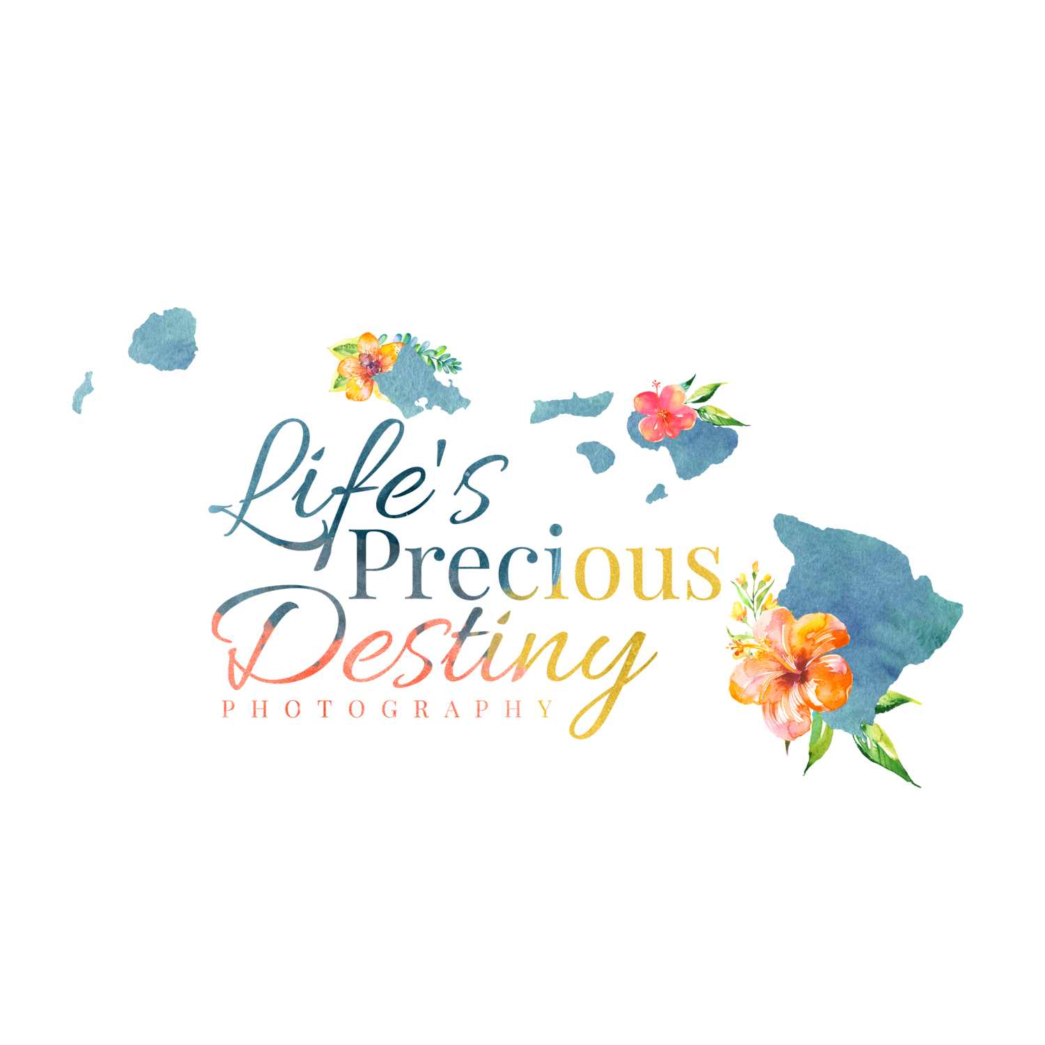 Life's Precious Destiny Photography