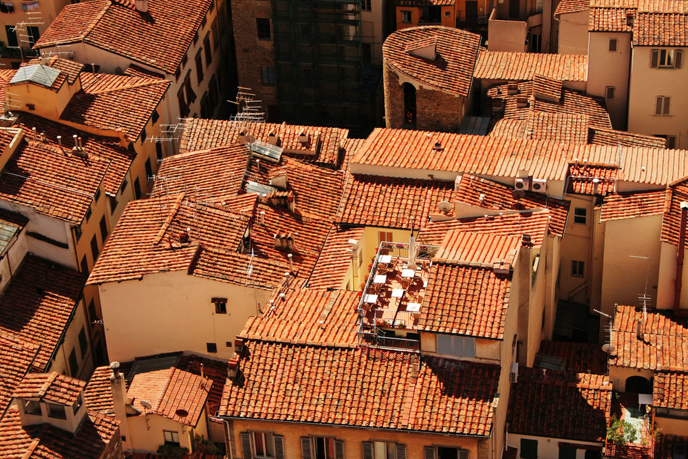 Roof Tops - Florence, Italy