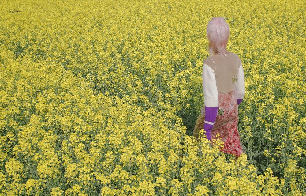 flower field3.jpg