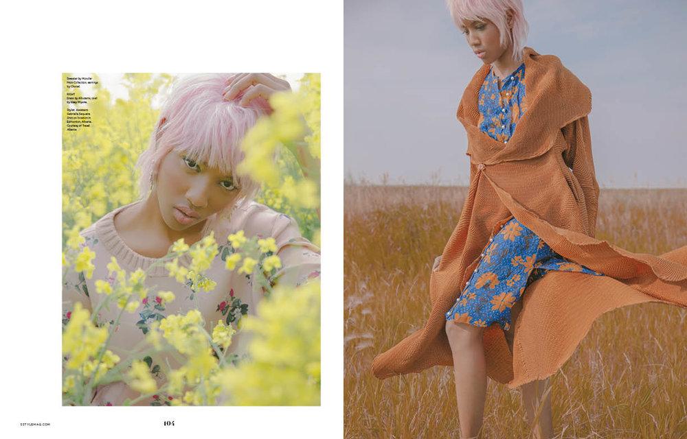 flower field5.jpg