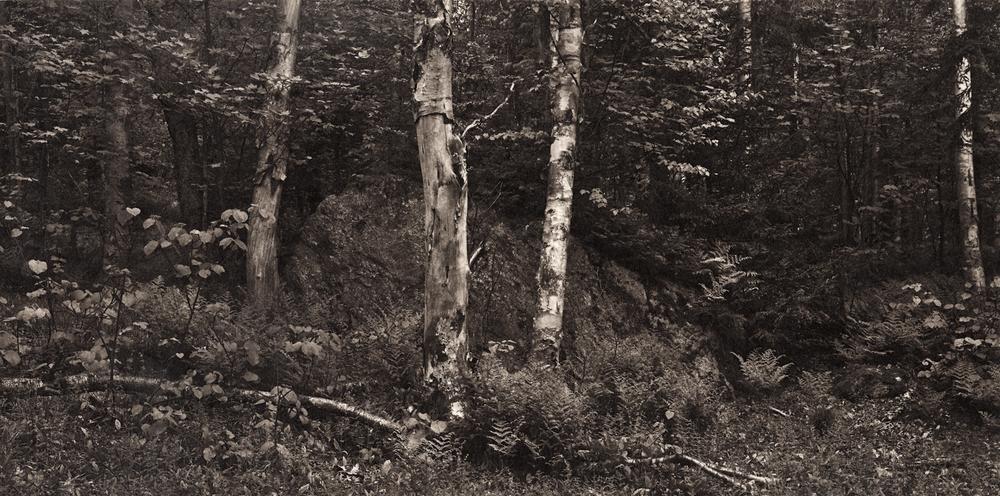 Ambler|Meditations-vermont-monroe.jpg