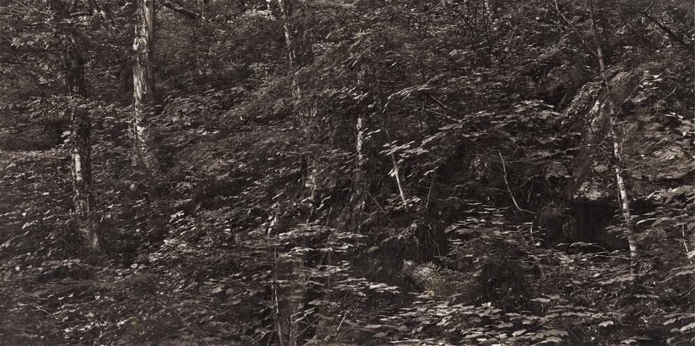 Ambler|Meditations-vermont-smugglers-notch-4.jpg