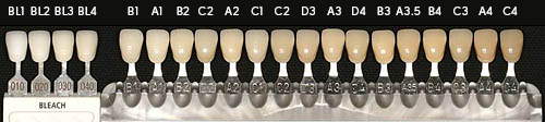 The bleaching shade guide on left and traditional natural tooth shade guide on right.