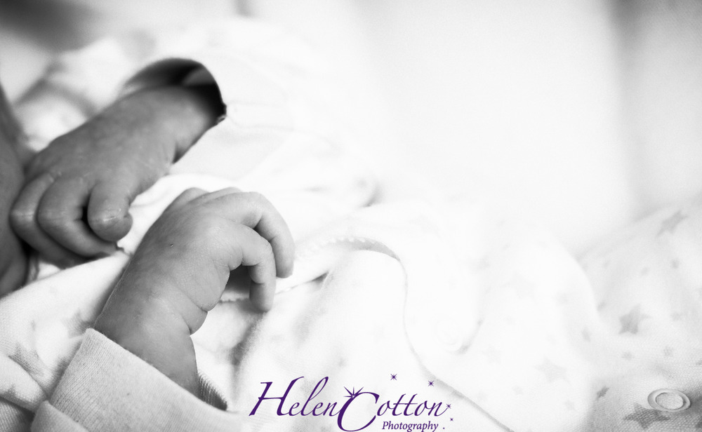 Henry Birch_Helen Cotton Photography©--27.JPG