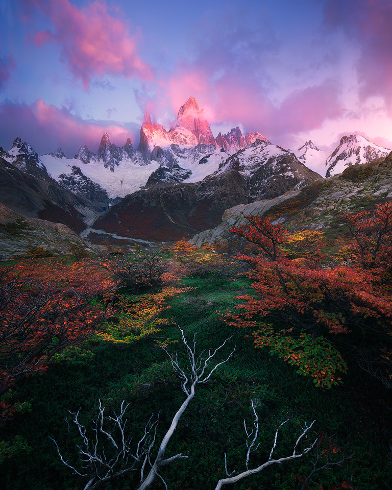 This image combines two complementary color harmonies. the blue of the sky compliments the orange of the foliage while the green of the brush compliments the pinkish reds of the clouds.