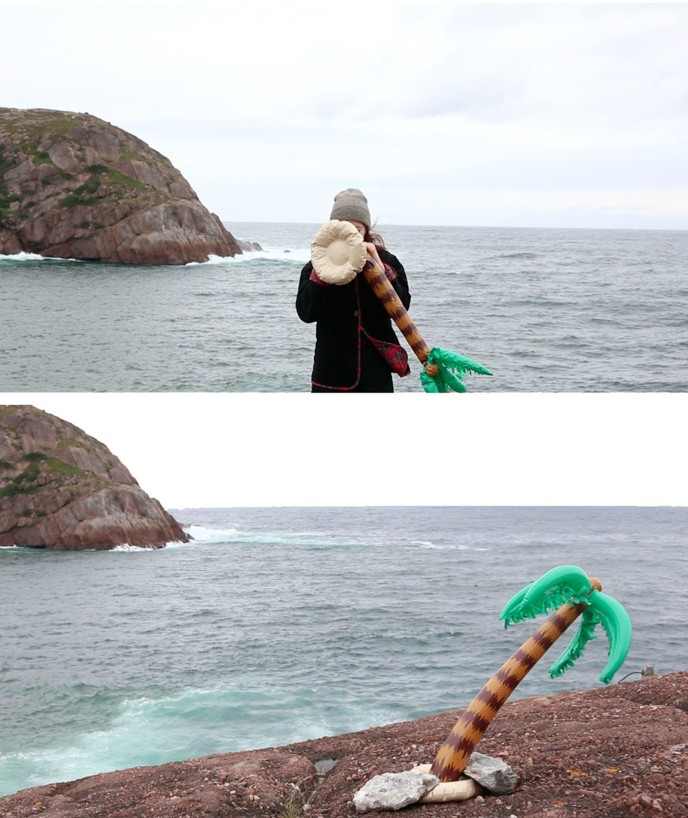 FOMO ISLAND  Performance with plastic palm tree in St. John's, NL, Canada. Full video link   here.