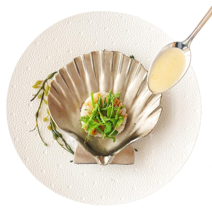 Scallop Shell Dish cropped.jpg
