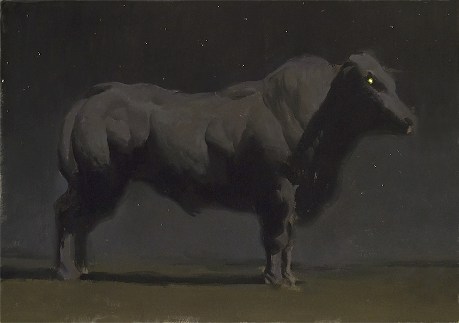 Bovine II,  oil on illustration board, 18x24 in., 2014.