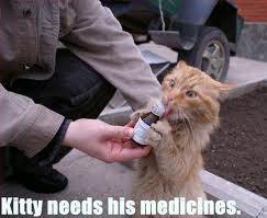 kitty_medicine