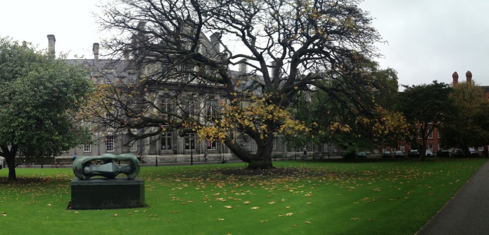 The green at Trinity College, Dublin
