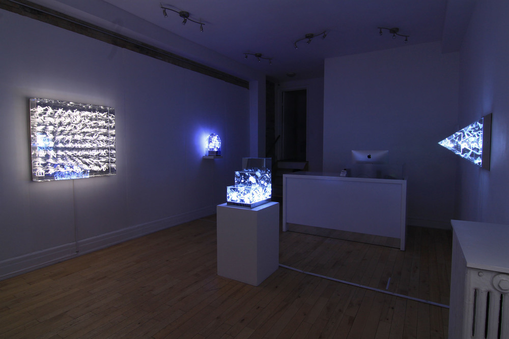 Install at Project Gallery, Toronto, ON