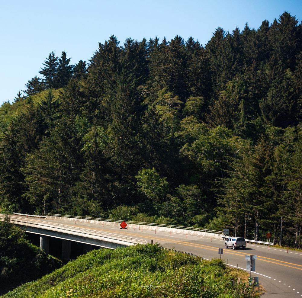 California-2990.jpg