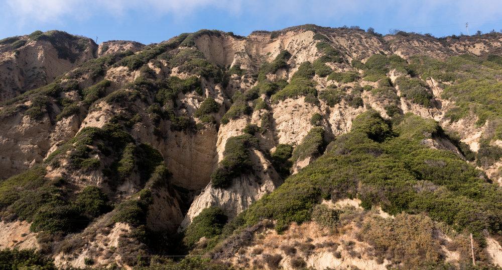 California-1424.jpg