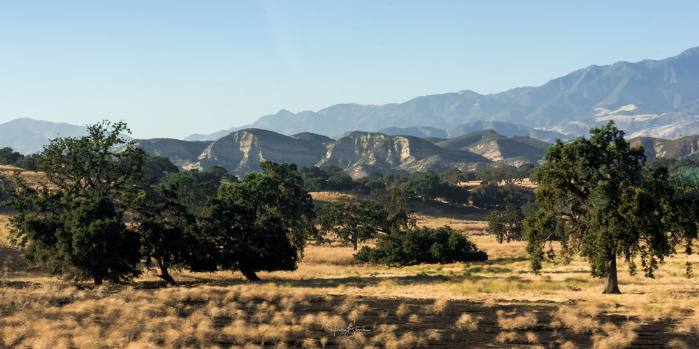 California-1562.jpg