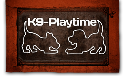 K9-Playtime Dog Daycare and Boarding Kennel: Hudson, Wisconsin/East Twin Cities Metro