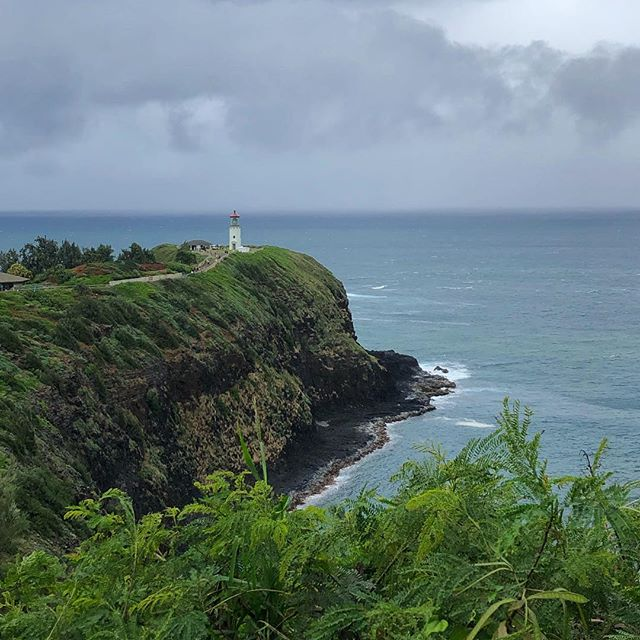 Kilauea Point Lighthouse | Kauai ⛰ - #itsgoingtorain #kauia #kilaueapoint #outside #hourfun #lighthouse #travel #latergram