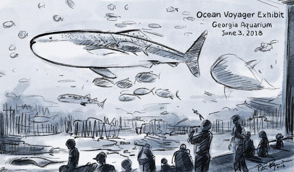 Aquarium sketch.jpg