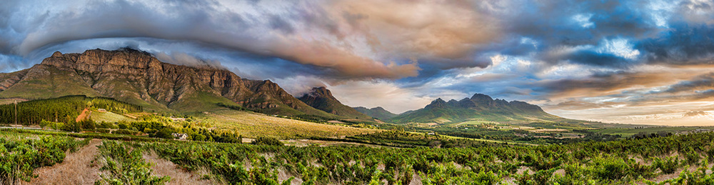 Stellenbosch Panoramic