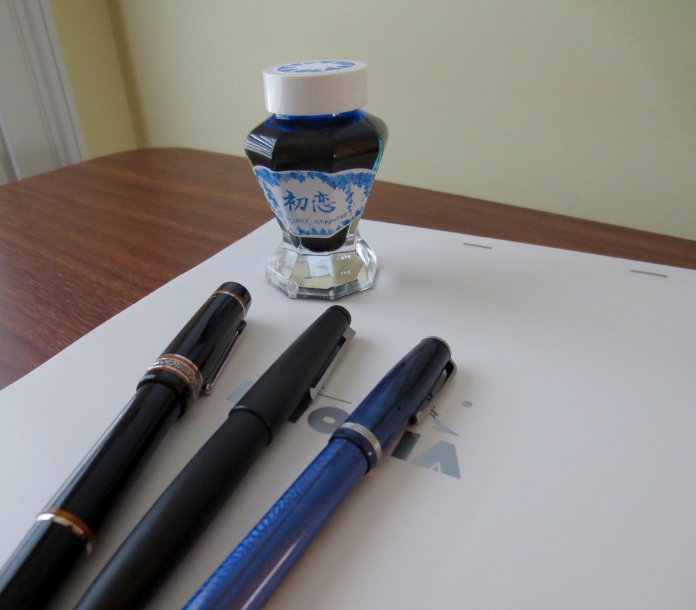 Sailor Bung Box Sapphire in the tall bottle.  I currently have this ink in three pens:  a Delta Dolcevita Soiree with a fine nib, a Lamy 2000 with an EF nib, and an Esterbrook with a signature stub.