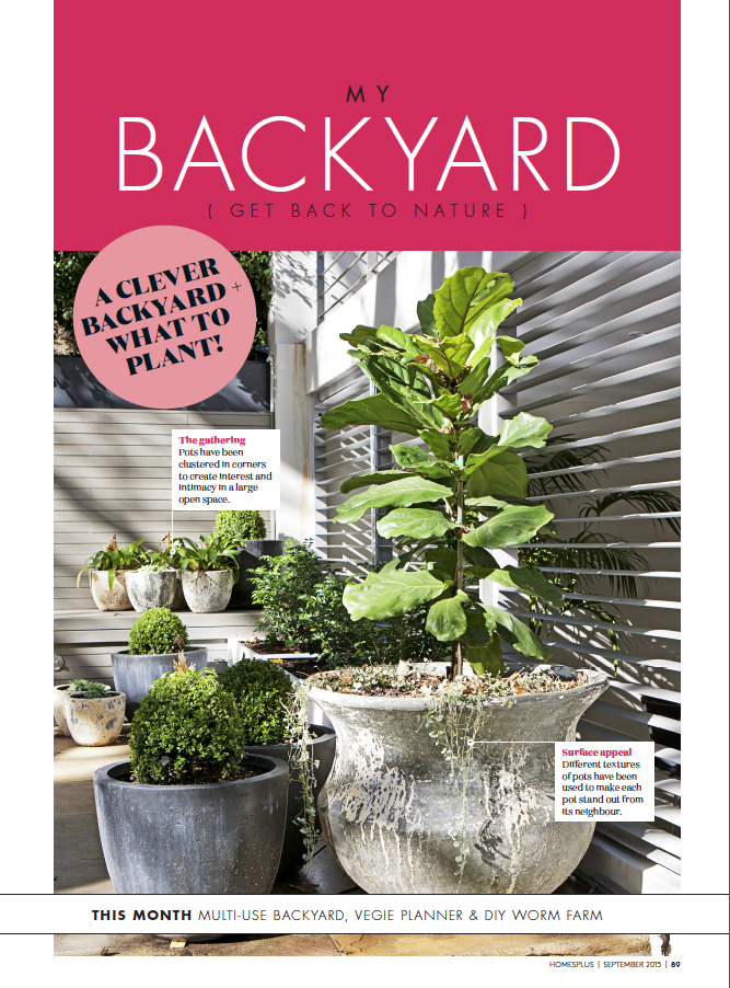 HOMES +, August 2015