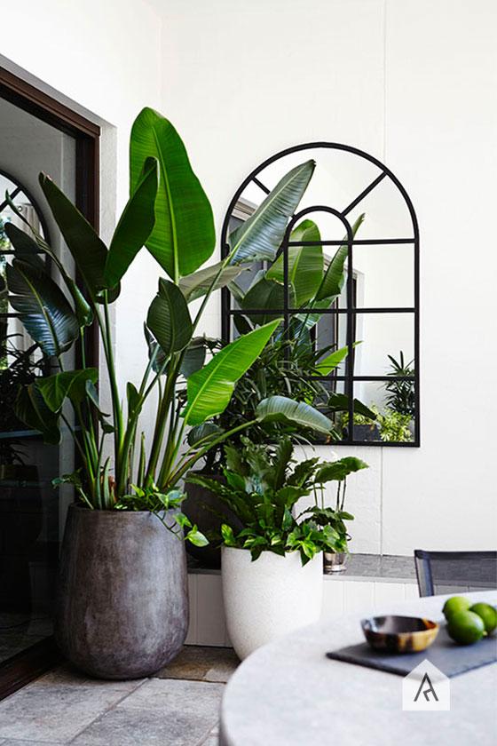 ©-Adam-Robinson-Design-Sydney-Outdoor-Design-Styling-Rooftop-Balcony-Gardens-Waterloo-Project-03.jpg