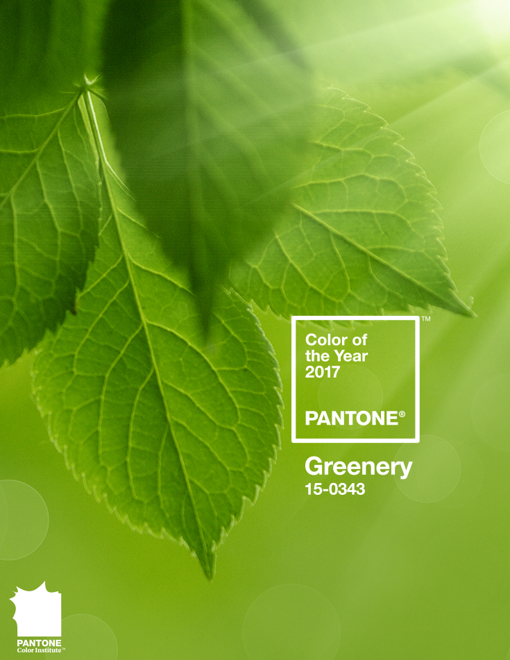 Adam Robinson Design Sydney Style Tip Pantone 2017 Colour of The Year Greenery 15-0343 TPG