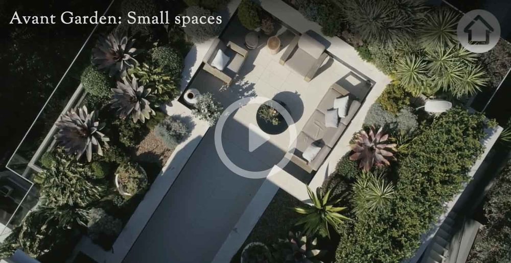 Adam Robinson Design Rooftop Garden Sydney How to create big impact in a small garden realestate.com.au.jpg
