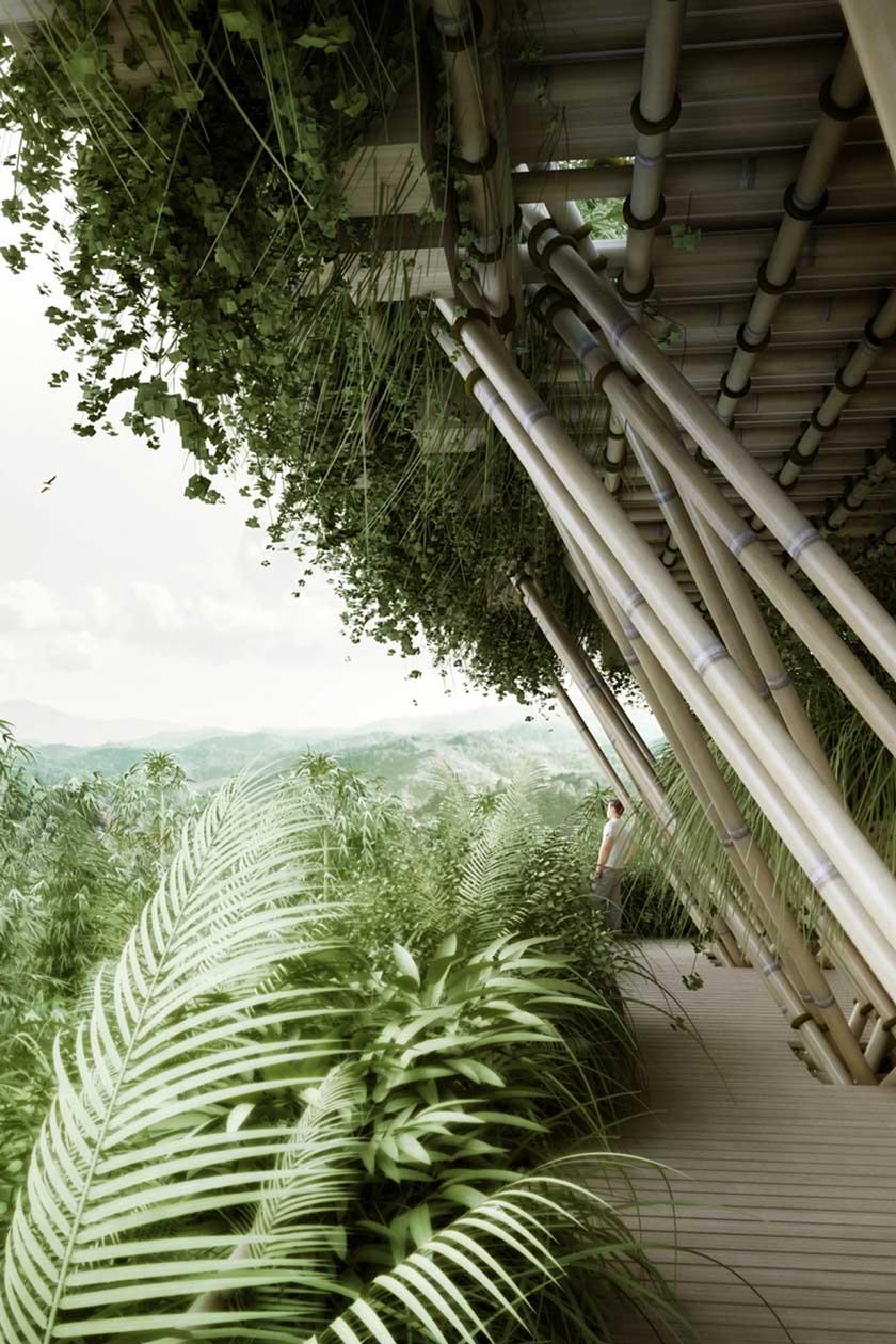 Adam Robinson Design Sydney Landscape Designer A Lesson In Sustainability Penda b.jpg