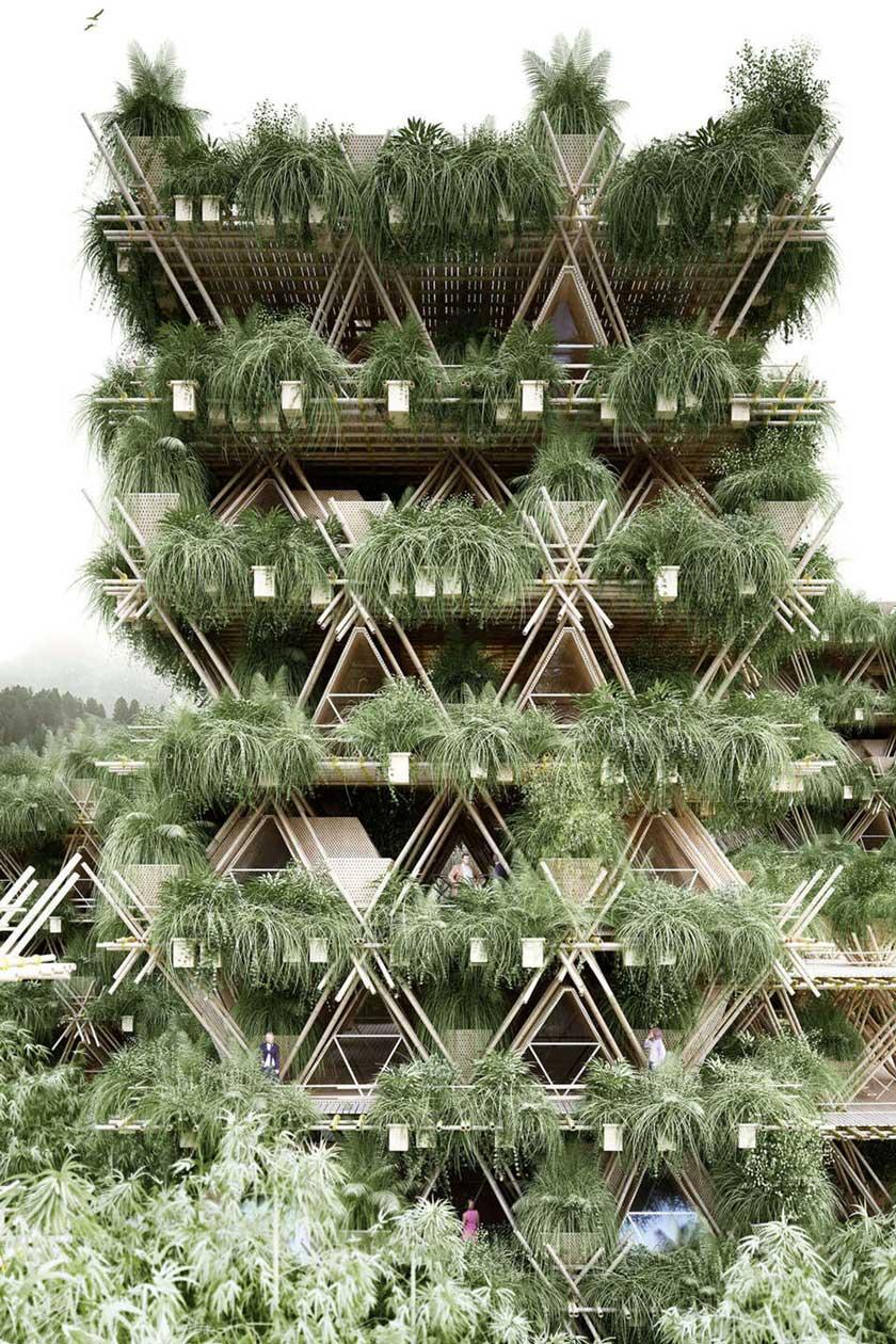 Adam Robinson Design Sydney Landscape Designer A Lesson In Sustainability Penda c.jpg