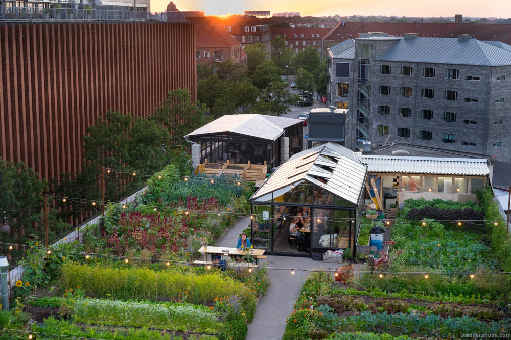 A similar community garden in Copenahgen
