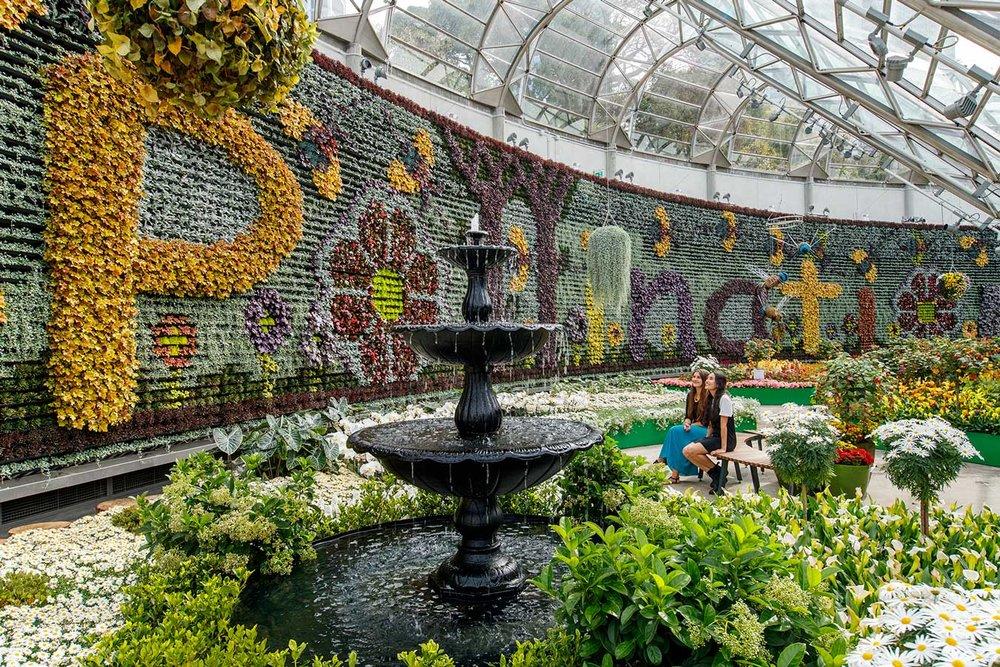 Image:u0026nbsp;courtesy Of Pollination At The Calyx At The Royal Botanic  Gardens Sydney