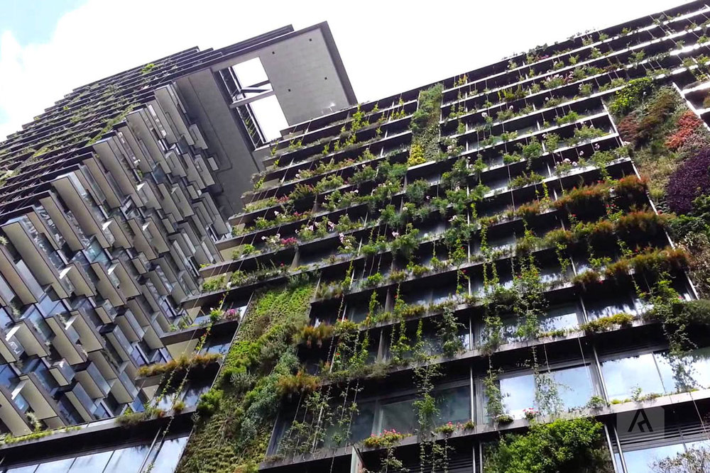 A much loved new urban forest development in Sydney's CBD, The Central Park mixed-use building.