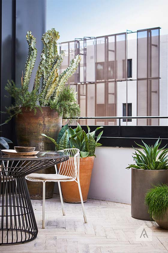 © Adam Robinson Design Sydney Outdoor Design Styling Rooftop Balcony Garden Waterloo 01.jpg