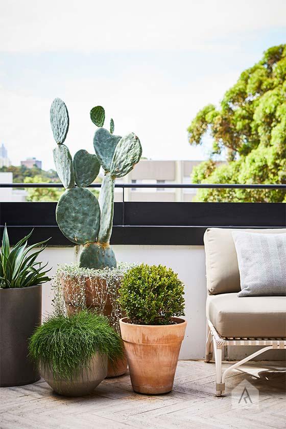 © Adam Robinson Design Sydney Outdoor Design Styling Rooftop Balcony Garden Waterloo 09.jpg